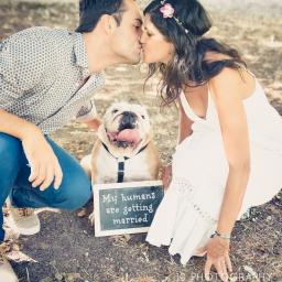 Engagement – Irene + Giacomo + Penny